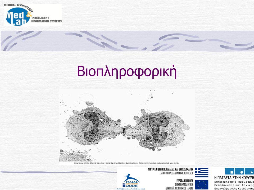 Ακολουθία αμινοξέων (πρωτεΐνη)
