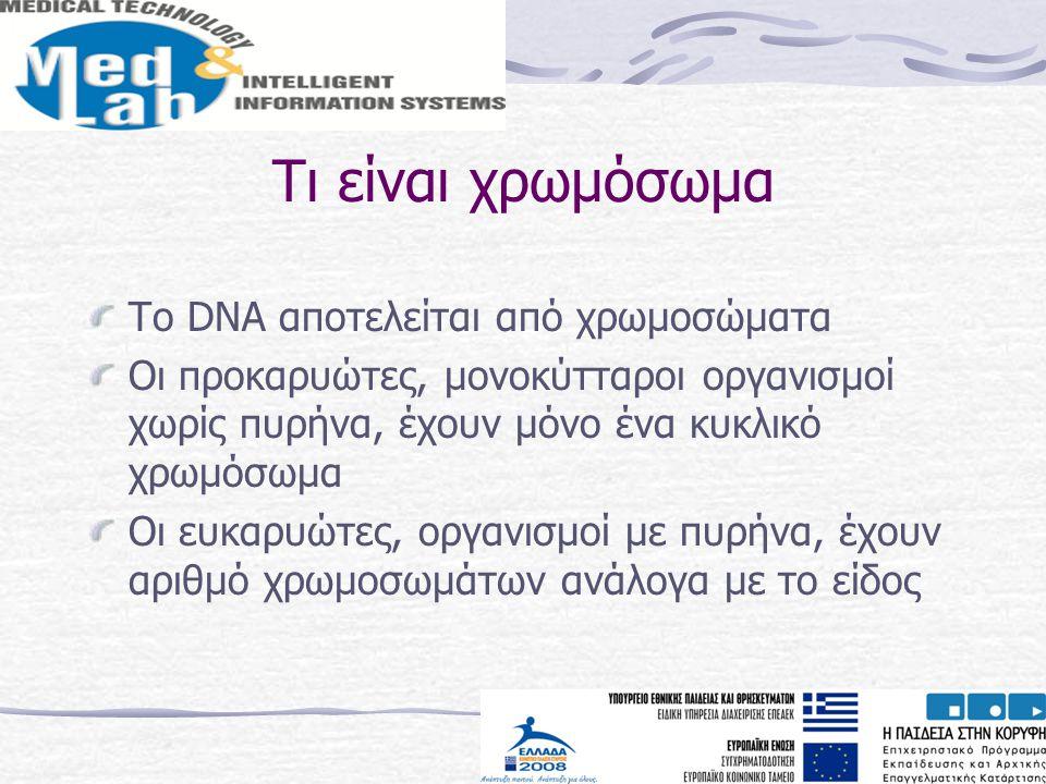 Τι είναι χρωμόσωμα Το DNA αποτελείται από χρωμοσώματα Οι προκαρυώτες, μονοκύτταροι οργανισμοί χωρίς πυρήνα, έχουν μόνο ένα κυκλικό χρωμόσωμα Οι ευκαρυ