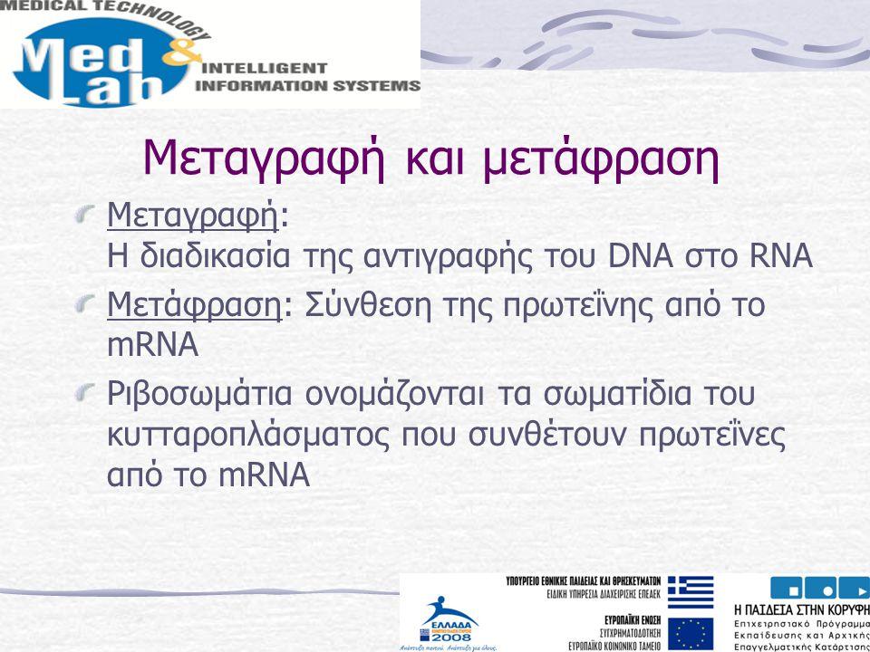 Μεταγραφή και μετάφραση Μεταγραφή: H διαδικασία της αντιγραφής του DNA στο RNA Μετάφραση: Σύνθεση της πρωτεΐνης από το mRNA Ριβοσωμάτια ονομάζονται τα