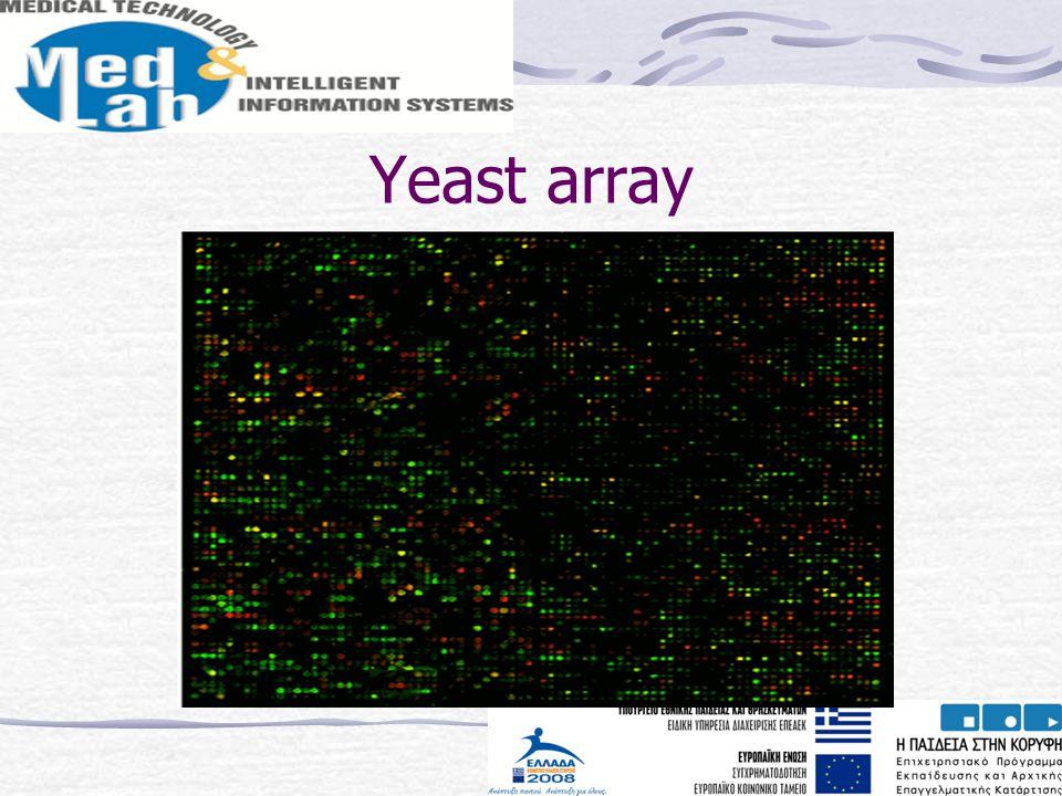 Yeast array