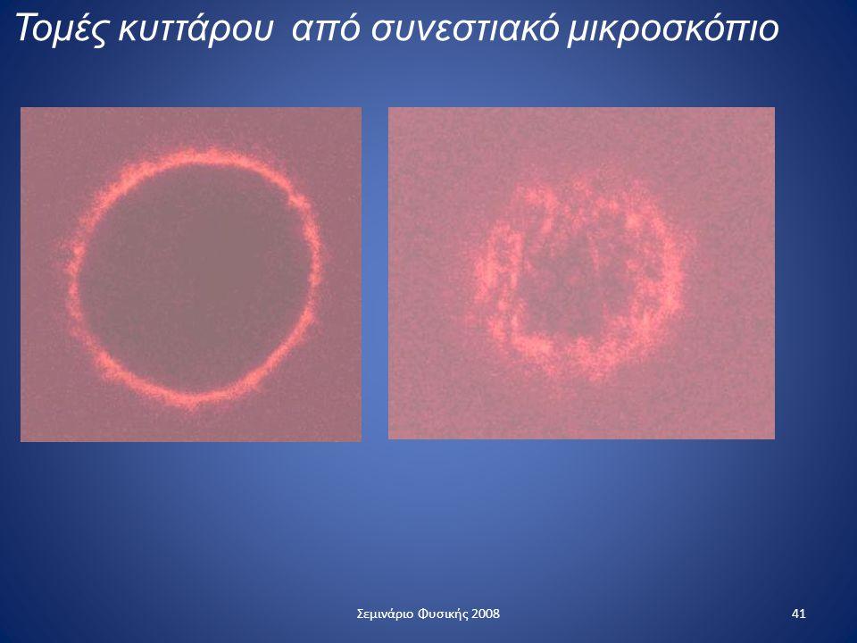 Τομές κυττάρου από συνεστιακό μικροσκόπιο 41Σεμινάριο Φυσικής 2008