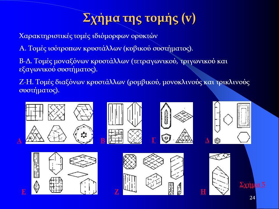 24 Σχήμα της τομής (v) Χαρακτηριστικές τομές ιδιόμορφων ορυκτών Α. Τομές ισότροπων κρυστάλλων (κυβικού συστήματος). Β-Δ. Τομές μοναξόνων κρυστάλλων (τ