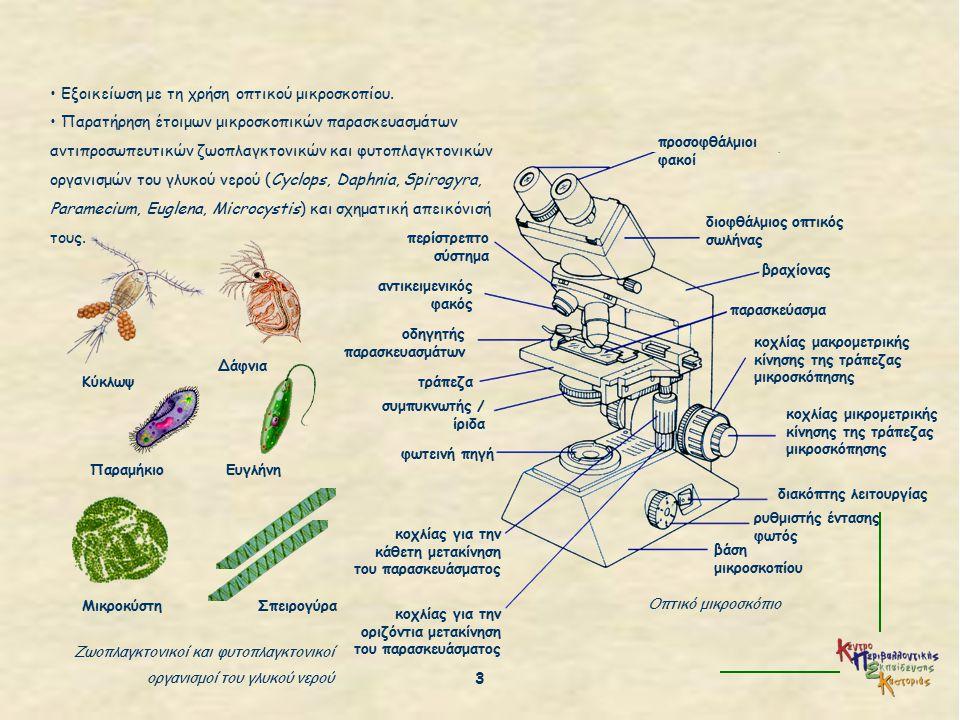 ΒΑΣΙΛΕΙΑ ΜΟΝΗΡΗ ΠΡΩΤΙΣΤΑ ΜΥΚΗΤΕΣ ΦΥΤΑ ΖΩΑ απλοί, μονοκύτταροι, προκαρυωτικοί οργανισμοί απλοί, μονοκύτταροι, ευκαρυωτικοί οργανισμοί πολυκύτταροι συνήθως οργανισμοί πολυκύτταροι οργανισμοί με εξειδικευμένα κύτταρα πολυκύτταροι οργανισμοί με εξειδικευμένα κύτταρα απορροφούν την τροφή τους από το περιβάλλον τους (μερικά φωτοσυνθέτουν) φωτοσυνθέτουν, απορροφούν ή προσλαμβάνουν την τροφή τους απορροφούν την τροφή τους από το περιβάλλον τους φωτοσυνθέτουν την τροφή τους προσλαμβάνουν την τροφή τους από το περιβάλλον τους βακτήρια, κυανοβακτήρια πρωτόζωα, πρωτόφυτα μούχλες, μανιτάρια βρύα, φτέρες, γυμνόσπερμα και αγγειόσπερμα φυτά ασπόνδυλα (π.χ.