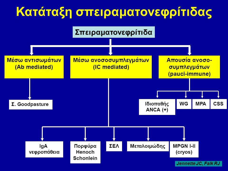 Κατάταξη σπειραματονεφρίτιδας Σπειραματονεφρίτιδα Μέσω αντισωμάτων (Αb mediated) Μέσω ανoσοσυμπλεγμάτων (IC mediated) Απουσία ανoσο- συμπλεγμάτων (pau