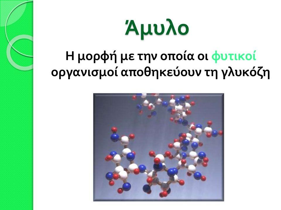 Δομή αμύλου o Το άμυλο είναι ένας από τους πολυσακχαρίτες.