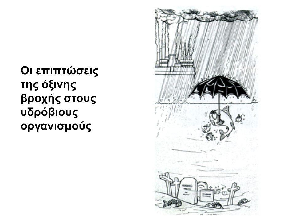 Οι επιπτώσεις της όξινης βροχής στους υδρόβιους οργανισμούς