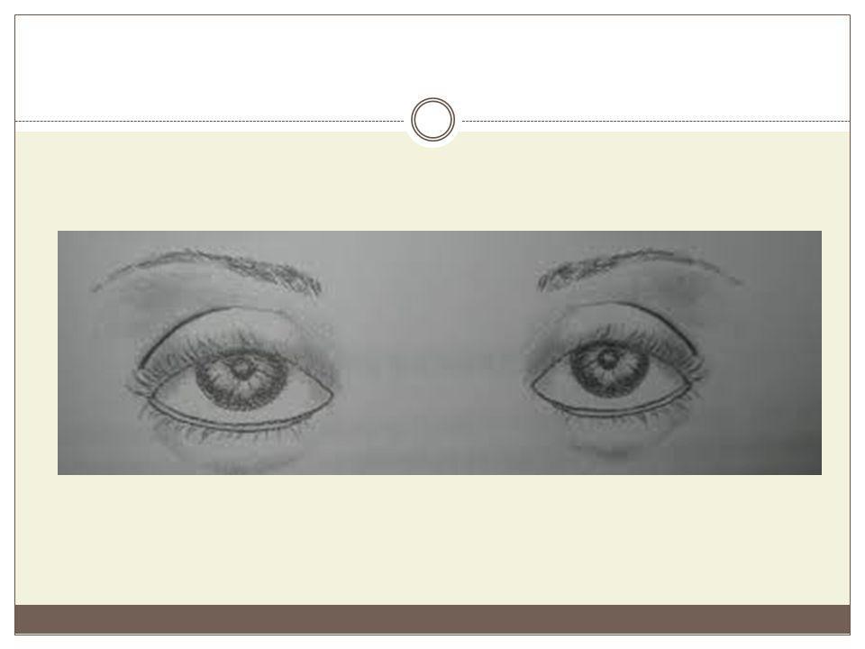 Καθοδικά μάτια Ο χαρακτηρισμός αυτός δίνεται σε σχέση με τη νοητή οριζόντια γραμμή, που ενώνει τις δύο εσωτερικές γωνιές των ματιών.