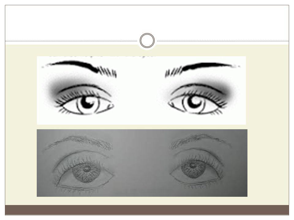 Ανοδικά Μάτια Και εδώ ο διαχωρισμός έχει σχέση με την θέση της εξωτερικής γωνίας.