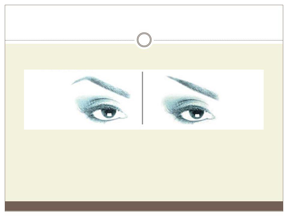 Στρογγυλά μάτια Είναι τα μάτια που η ιδιομορφία τους αναφέρεται στο σχήμα τους μόνο.