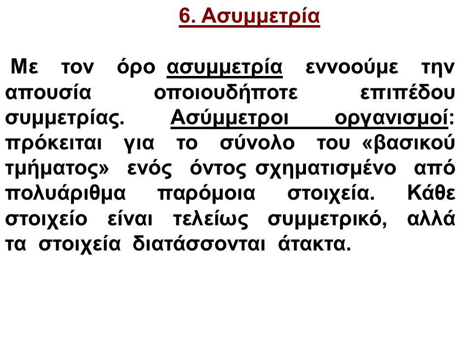6.Ασυμμετρία Με τον όρο ασυμμετρία εννοούμε την απουσία οποιουδήποτε επιπέδου συμμετρίας.