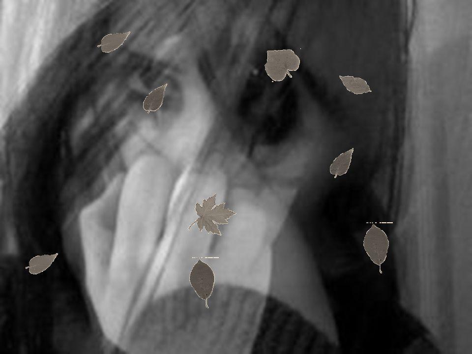 Σκηνικές εικόνες Χώρος Πρόσωπα -Κρασοπουλιό -Πηγάδι -Μενούσης/Μπιρμπίλης/Μεμέτ αγάς -Σπίτι του Μεμέτ αγά - Μεμέτ Αγάς / η γυναίκα - Χωριανοί