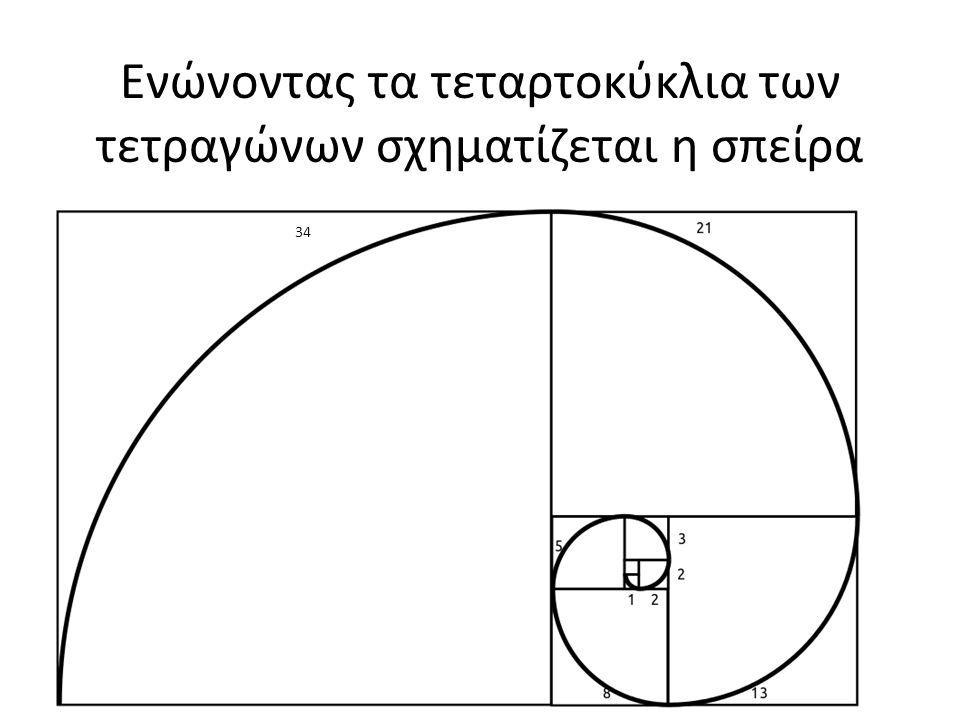 Ενώνοντας τα τεταρτοκύκλια των τετραγώνων σχηματίζεται η σπείρα 34