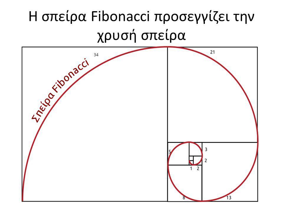 Η σπείρα Fibonacci προσεγγίζει την χρυσή σπείρα 34