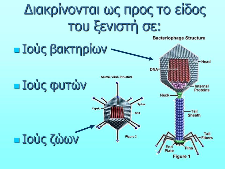 Διακρίνονται ως προς το είδος του ξενιστή σε: Ιούς βακτηρίων Ιούς βακτηρίων Ιούς φυτών Ιούς φυτών Ιούς ζώων Ιούς ζώων