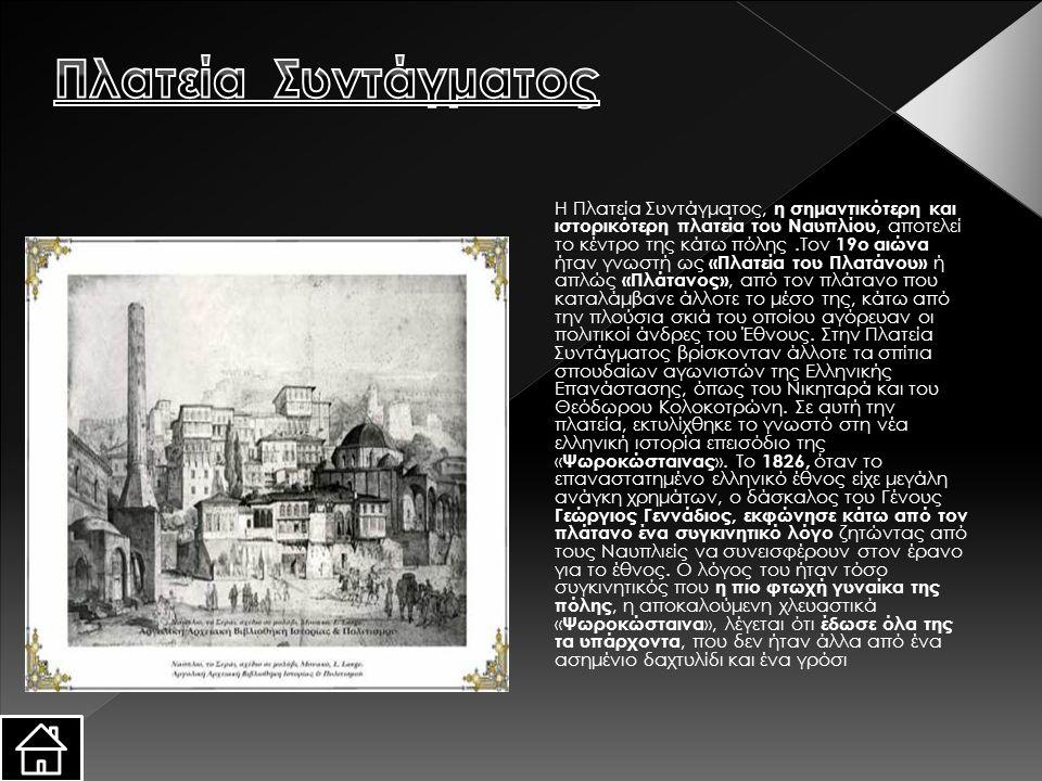 H Πλατεία Συντάγματος, η σημαντικότερη και ιστορικότερη πλατεία του Nαυπλίου, αποτελεί το κέντρο της κάτω πόλης.Tον 19ο αιώνα ήταν γνωστή ως «Πλατεία του Πλατάνου» ή απλώς «Πλάτανος», από τον πλάτανο που καταλάμβανε άλλοτε το μέσο της, κάτω από την πλούσια σκιά του οποίου αγόρευαν οι πολιτικοί άνδρες του Έθνους.