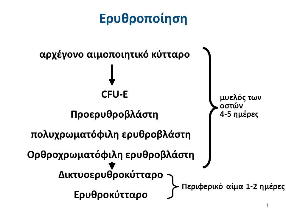 Σπλήνας 2/2 Μεγάλη παραμονή στο σπλήνα: o Αυξημένη επαφή με τα σπληνικά μακροφάγα (χορδές του ερυθρού πολφού).