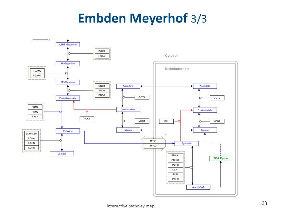 Embden Meyerhof 3/3 33 Interactive pathway map