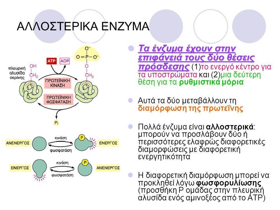 ΑΛΛΟΣΤΕΡΙΚΑ ΕΝΖΥΜΑ Τα ένζυμα έχουν στην επιφάνειά τους δύο θέσεις πρόσδεσης Τα ένζυμα έχουν στην επιφάνειά τους δύο θέσεις πρόσδεσης (1)το ενεργό κέντ