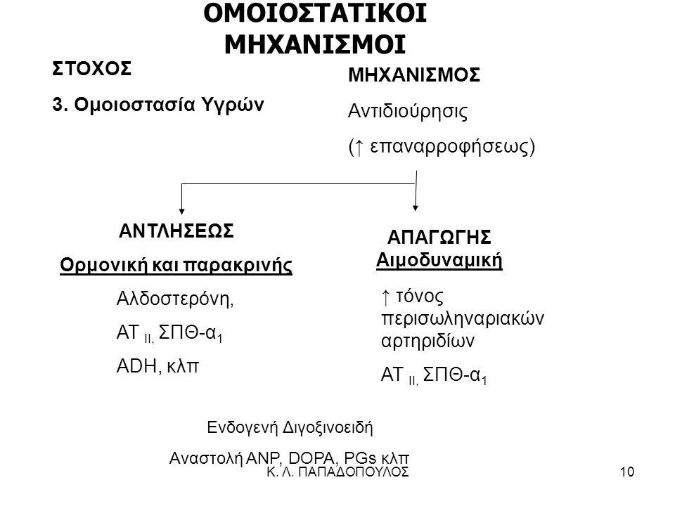Κ. Λ. ΠΑΠΑΔΟΠΟΥΛΟΣ10 ΣΤΟΧΟΣ 3. Ομοιοστασία Υγρών ΜΗΧΑΝΙΣΜΟΣ Αντιδιούρησις (↑ επαναρροφήσεως) ↑ τόνος περισωληναριακών αρτηριδίων ΑΤ ΙΙ, ΣΠΘ-α 1 ΑΠΑΓΩΓ