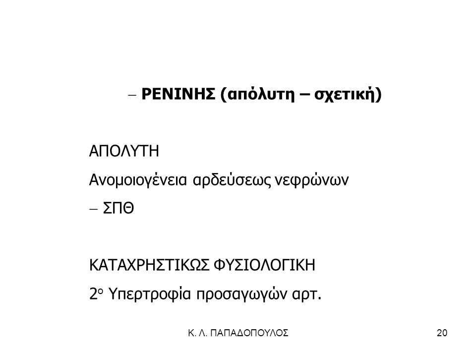 Κ. Λ. ΠΑΠΑΔΟΠΟΥΛΟΣ20  ΡΕΝΙΝΗΣ (απόλυτη – σχετική) ΑΠΟΛΥΤΗ Ανομοιογένεια αρδεύσεως νεφρώνων  ΣΠΘ ΚΑΤΑΧΡΗΣΤΙΚΩΣ ΦΥΣΙΟΛΟΓΙΚΗ 2 ο Υπερτροφία προσαγωγών