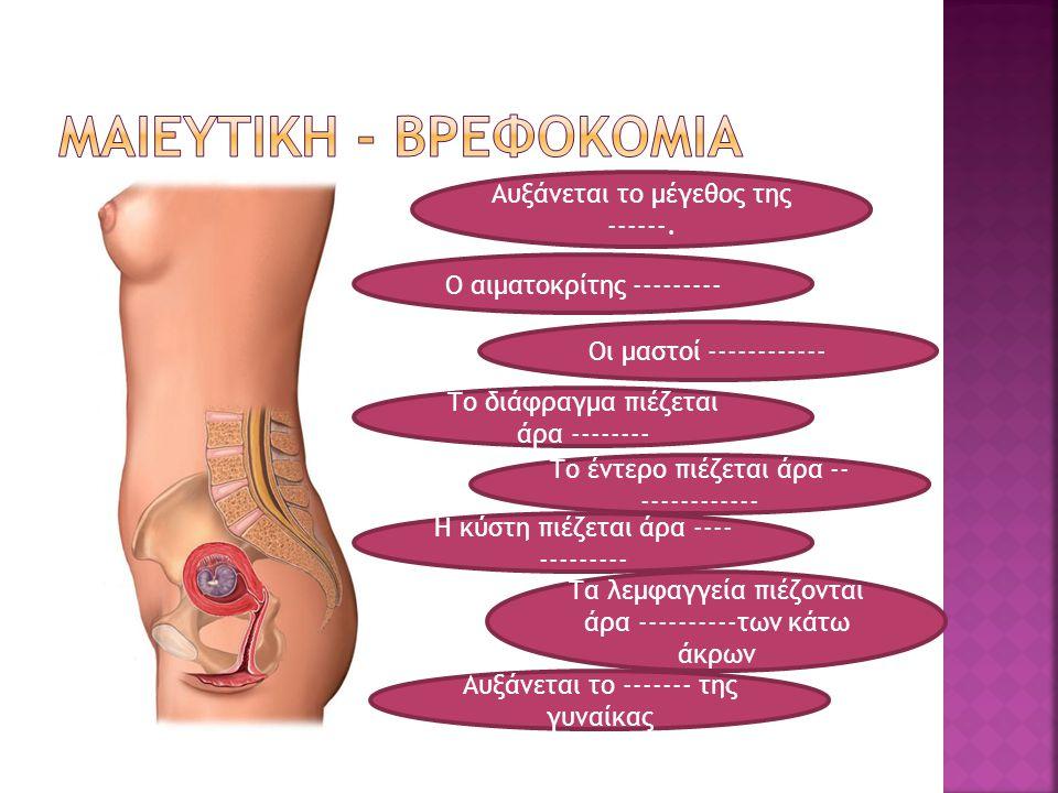 Αυξάνεται το μέγεθος της ------. Οι μαστοί ------------ Το έντερο πιέζεται άρα -- ------------ Η κύστη πιέζεται άρα ---- --------- Τα λεμφαγγεία πιέζο