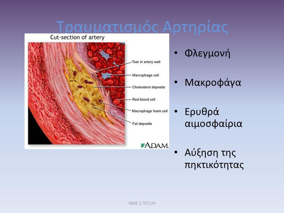 Τραυματισμός Αρτηρίας Φλεγμονή Μακροφάγα Ερυθρά αιμοσφαίρια Αύξηση της πηκτικότητας ΝΜΣ 2 IST/UH