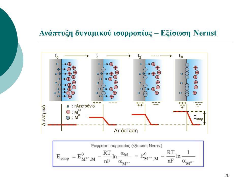 20 Ανάπτυξη δυναμικού ισορροπίας – Εξίσωση Nernst