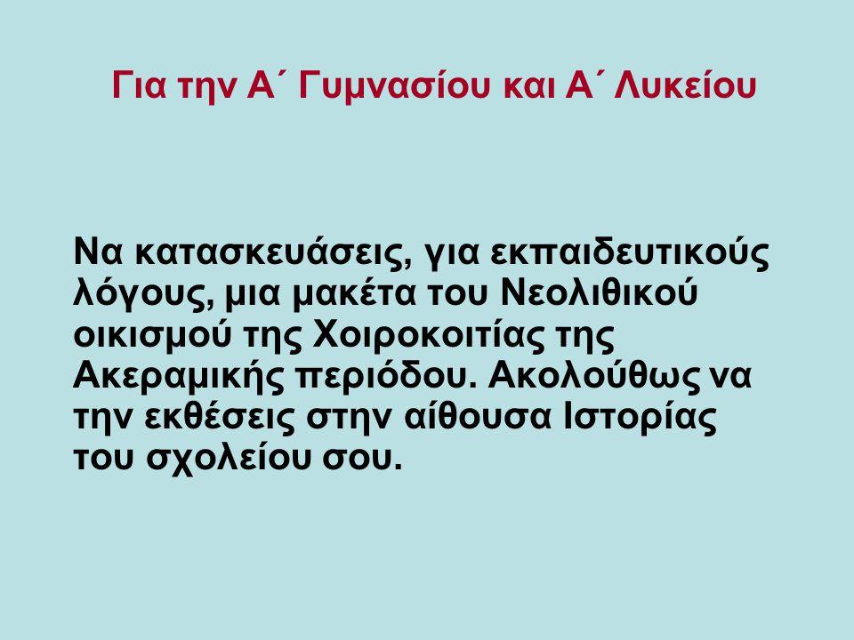 Να κατασκευάσεις, για εκπαιδευτικούς λόγους, μια μακέτα του Νεολιθικού οικισμού της Χοιροκοιτίας της Ακεραμικής περιόδου. Ακολούθως να την εκθέσεις στ