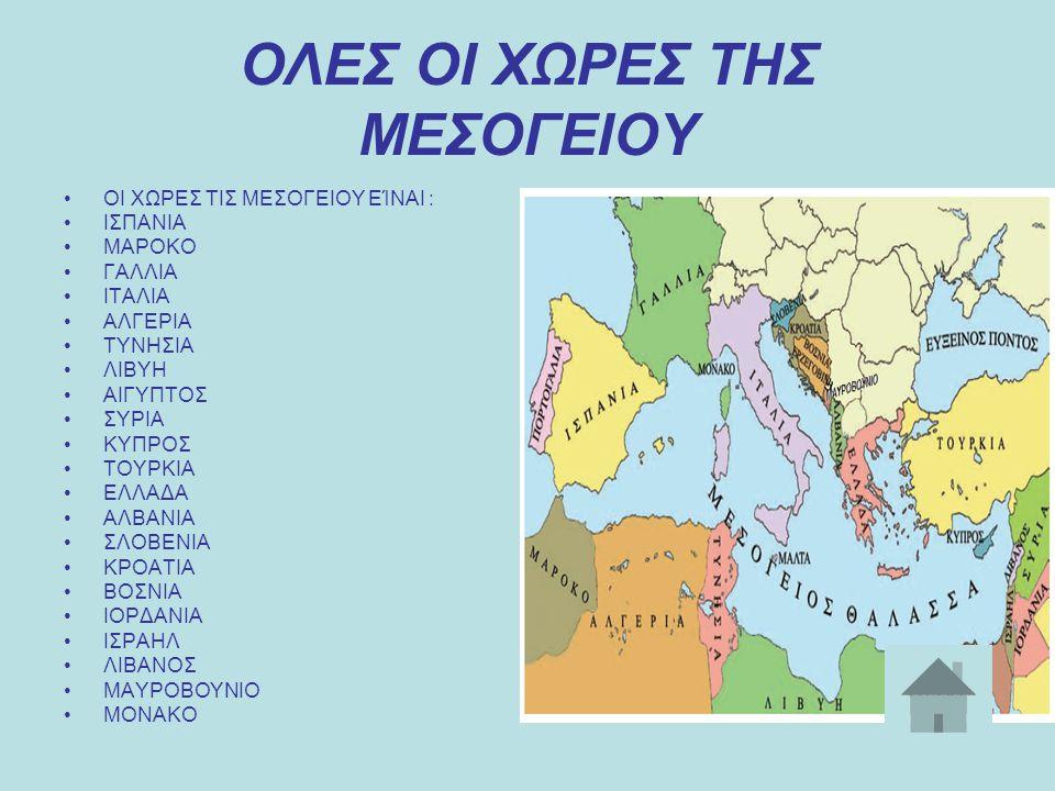 ΤΟΥΡΚΙΑ Η Δημοκρατία της Τουρκίας είναι μια αναπτυσσόμενη χώρα που βρίσκεται στη νοτιοδυτική Ασία, Ασία