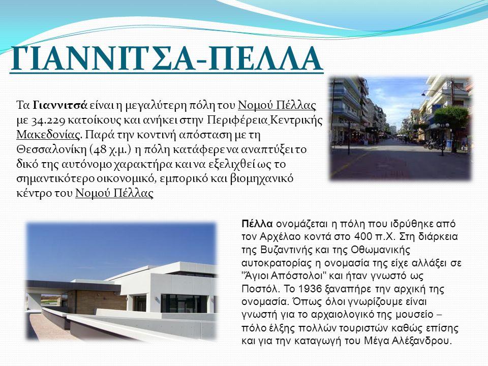 ΓΙΑΝΝΙΤΣΑ-ΠΕΛΛΑ Τα Γιαννιτσά είναι η μεγαλύτερη πόλη του Νομού Πέλλας με 34.229 κατοίκους και ανήκει στην Περιφέρεια Κεντρικής Μακεδονίας. Παρά την κο