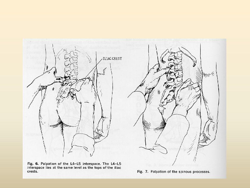 Πατέντα πόνου Ρίζας/ νεύρου Άλλη δερματική κατανομή πόνου έχουμε από τη ρίζα και άλλη από το νεύρο Κάθε νεύρο έχει τη δική του κατανομή πόνου/ συμπτωμάτων
