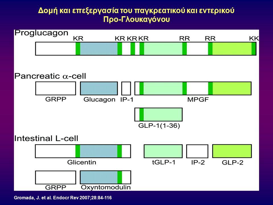 Gromada, J. et al. Endocr Rev 2007;28:84-116 Δομή και επεξεργασία του παγκρεατικού και εντερικού Προ-Γλουκαγόνου