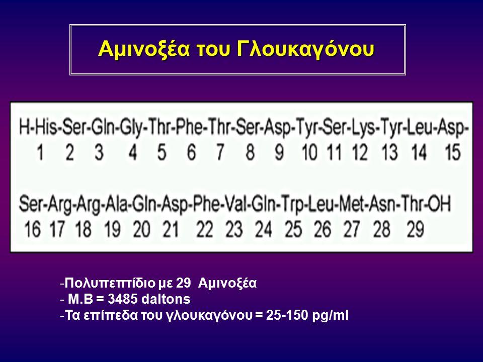 Αμινοξέα του Γλουκαγόνου -Πολυπεπτίδιο με 29 Αμινοξέα - Μ.Β = 3485 daltons -Τα επίπεδα του γλουκαγόνου = 25-150 pg/ml