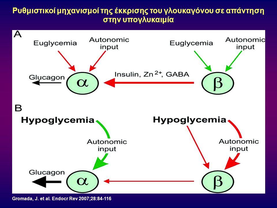 Gromada, J. et al. Endocr Rev 2007;28:84-116 Ρυθμιστικοί μηχανισμοί της έκκρισης του γλουκαγόνου σε απάντηση στην υπογλυκαιμία