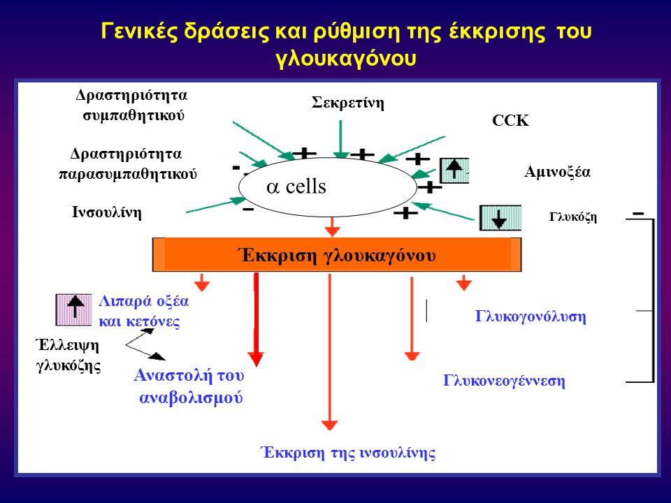 Γενικές δράσεις και ρύθμιση της έκκρισης τoυ γλoυκαγόνoυ  cells Έκκριση γλουκαγόνου Δραστηριότητα συμπαθητικού Λιπαρά οξέα και κετόνες Γλυκονεογέννεσ
