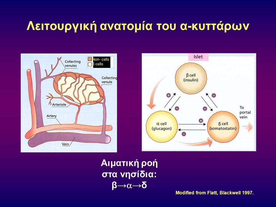 Το γλουκαγόνο που παράγεται από τα α-κύτταρα είναι υπεύθυνo για το 75% της ηπατικής παραγωγής γλυκόζης 150 100 50 Net Hepatic Glucose Production (mg/min Time (min) –30 0 30 6090120 START INFUSION * <.01 75%  in HGP vs.