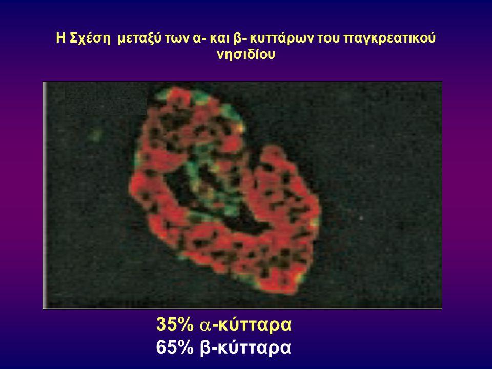 Επίδραση της έγχυσης επινεφρίνης στα επίπεδα γλουκαγόνου του πλάσματος σε φυσιολογικά άτομα