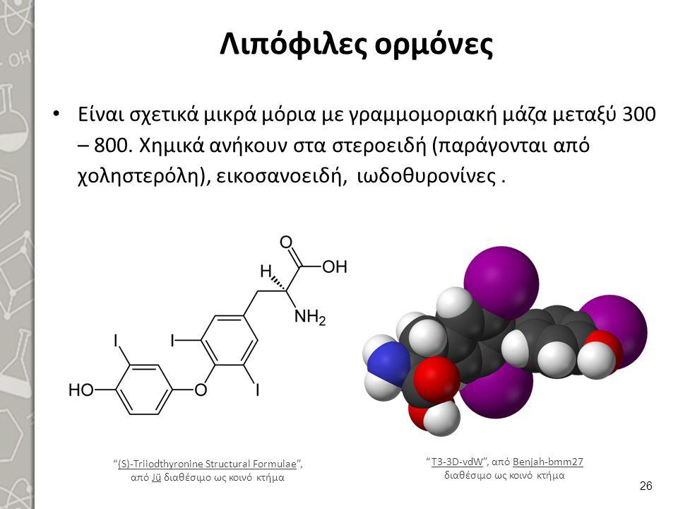 Λιπόφιλες ορμόνες Είναι σχετικά μικρά μόρια με γραμμομοριακή μάζα μεταξύ 300 – 800. Χημικά ανήκουν στα στεροειδή (παράγονται από χοληστερόλη), εικοσαν