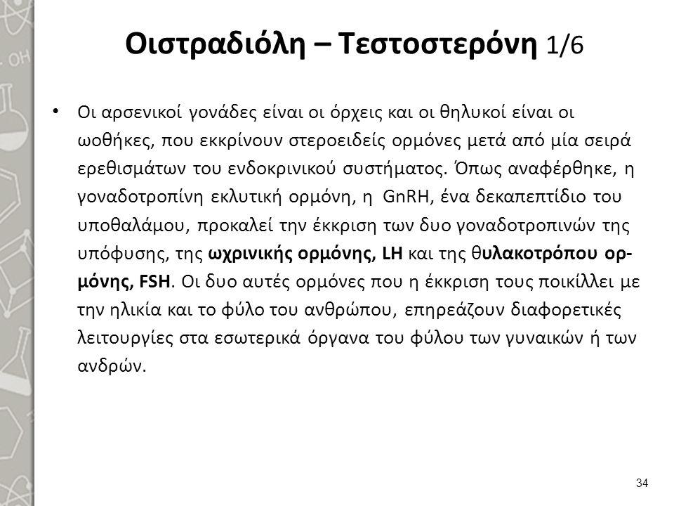Οιστραδιόλη – Τεστοστερόνη 1/6 Οι αρσενικοί γονάδες είναι οι όρχεις και οι θηλυκοί είναι οι ωοθήκες, που εκκρίνουν στεροειδείς ορμόνες μετά από μία σε