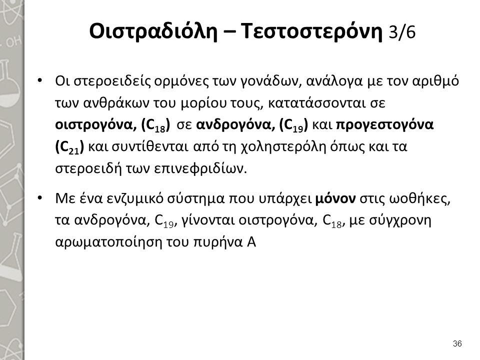 Οιστραδιόλη – Τεστοστερόνη 3/6 Οι στεροειδείς ορμόνες των γονάδων, ανάλογα με τον αριθμό των ανθράκων του μορίου τους, κατατάσσονται σε οιστρογόνα, (C