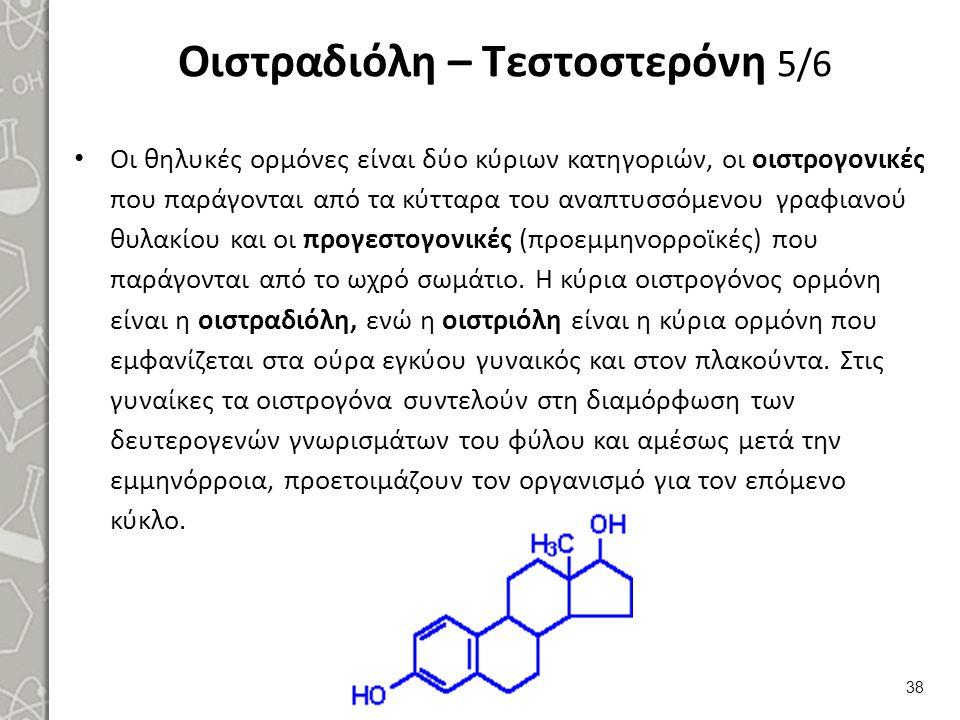 Οιστραδιόλη – Τεστοστερόνη 5/6 Οι θηλυκές ορμόνες είναι δύο κύριων κατηγοριών, οι οιστρογονικές που παράγονται από τα κύτταρα του αναπτυσσόμενου γραφ