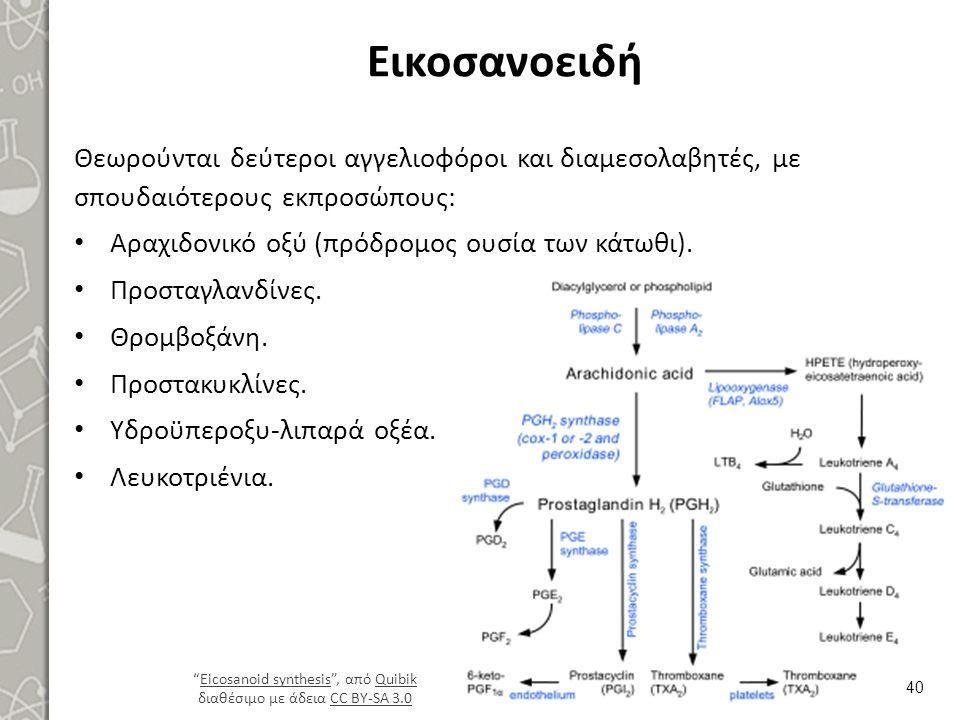 Εικοσανοειδή Θεωρούνται δεύτεροι αγγελιοφόροι και διαμεσολαβητές, με σπουδαιότερους εκπροσώπους: Αραχιδονικό οξύ (πρόδρομος ουσία των κάτωθι). Προσταγ