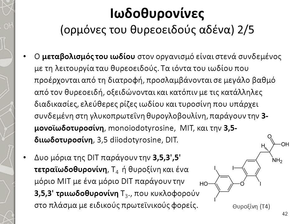 Ιωδοθυρονίνες (ορμόνες του θυρεοειδούς αδένα) 2/5 Ο μεταβολισμός του ιωδίου στον οργανισμό είναι στενά συνδεμένος με τη λειτουργία ταυ θυρεοειδούς. Τα