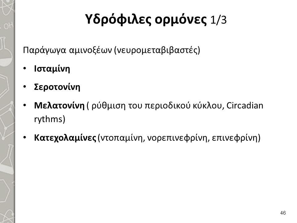 Υδρόφιλες ορμόνες 1/3 Παράγωγα αμινοξέων (νευρομεταβιβαστές) Ισταμίνη Σεροτονίνη Μελατονίνη ( ρύθμιση του περιοδικού κύκλου, Circadian rythms) Κατεχολ