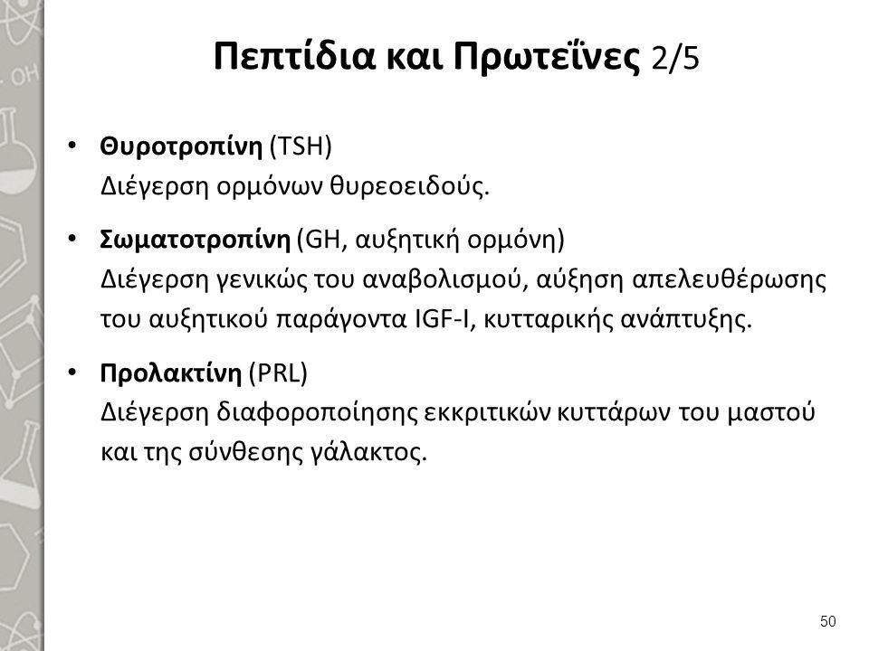 Πεπτίδια και Πρωτεΐνες 2/5 Θυροτροπίνη (TSH) Διέγερση ορμόνων θυρεοειδούς. Σωματοτροπίνη (GH, αυξητική ορμόνη) Διέγερση γενικώς του αναβολισμού, αύξησ