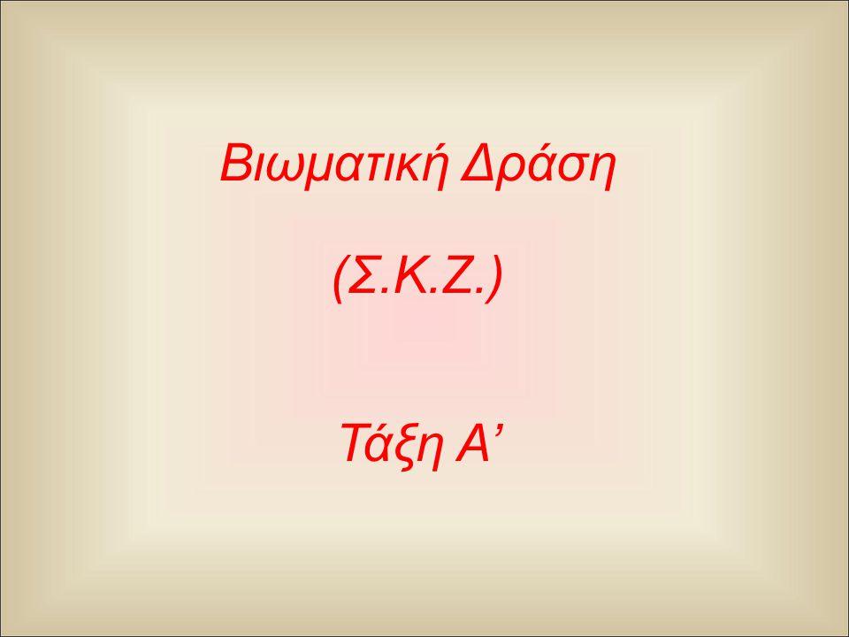 Βιωματική Δράση ( Σ. Κ. Ζ.) Τάξη A'
