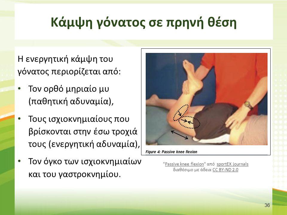 Κάμψη γόνατος σε πρηνή θέση Η ενεργητική κάμψη του γόνατος περιορίζεται από: Τον ορθό μηριαίο μυ (παθητική αδυναμία), Τους ισχιοκνημιαίους που βρίσκον