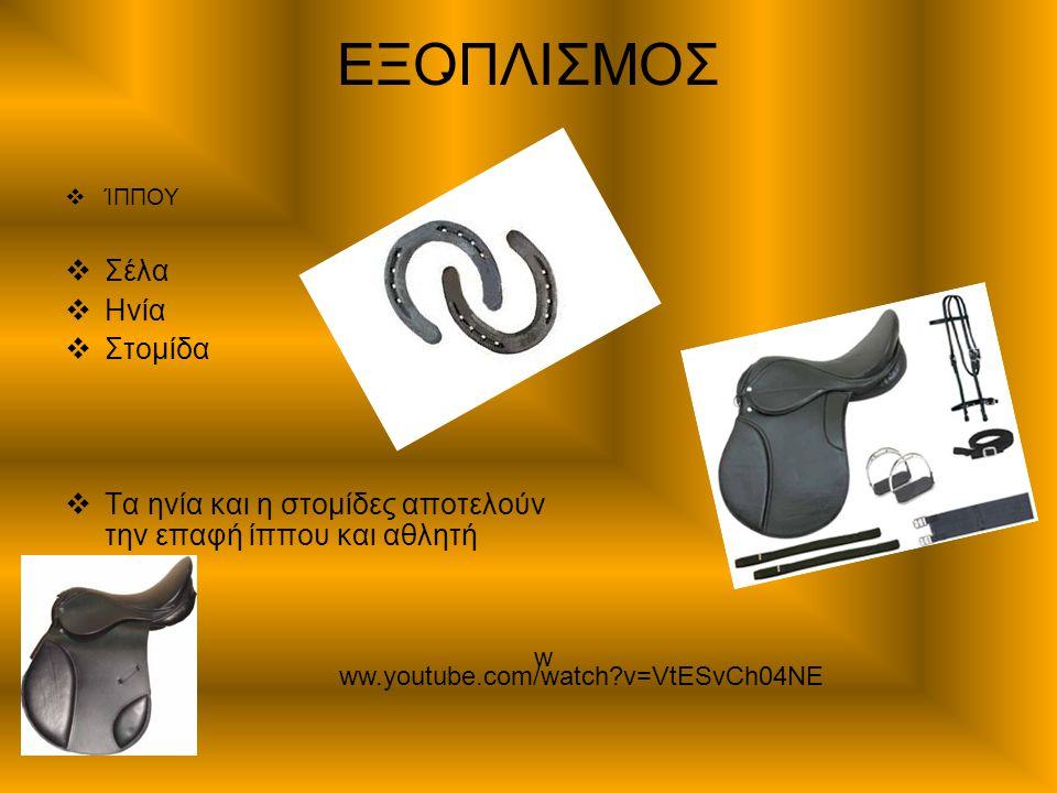ΕΞΟΠΛΙΣΜΟΣ  ΊΠΠΟΥ  Σέλα  Ηνία  Στομίδα  Τα ηνία και η στομίδες αποτελούν την επαφή ίππου και αθλητή ww.youtube.com/watch?v=VtESvCh04NE w