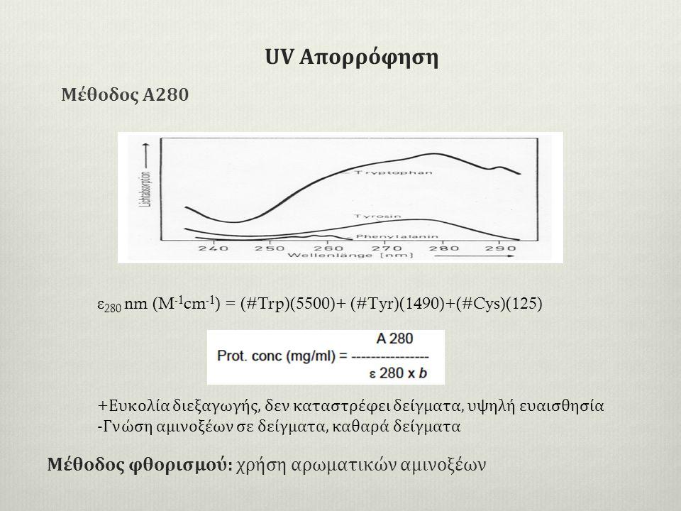 Μέθοδος φθορισμού: χρήση αρωματικών αμινοξέων Μέθοδος Α280 ε 280 nm (M -1 cm -1 ) = (#Trp)(5500)+ (#Tyr)(1490)+(#Cys)(125) + Ευκολία διεξαγωγής, δεν καταστρέφει δείγματα, υψηλή ευαισθησία -Γνώση αμινοξέων σε δείγματα, καθαρά δείγματα UV Απορρόφηση