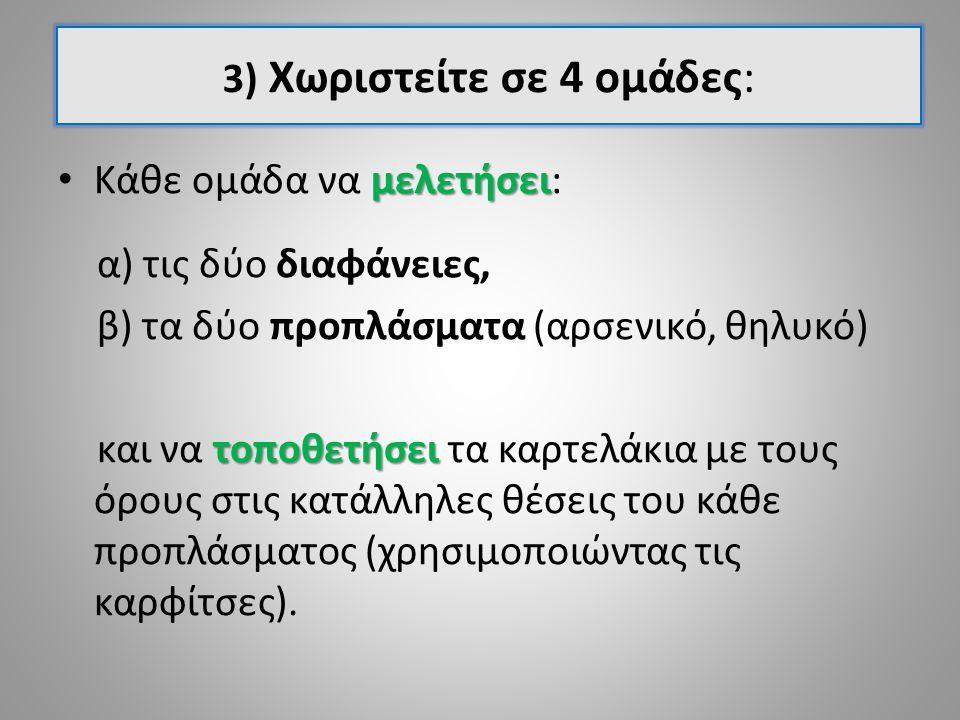 3) Χωριστείτε σε 4 ομάδες: μελετήσει Κάθε ομάδα να μελετήσει: α) τις δύο διαφάνειες, β) τα δύο προπλάσματα (αρσενικό, θηλυκό) τοποθετήσει και να τοποθετήσει τα καρτελάκια με τους όρους στις κατάλληλες θέσεις του κάθε προπλάσματος (χρησιμοποιώντας τις καρφίτσες).